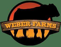 Weber Header Logo